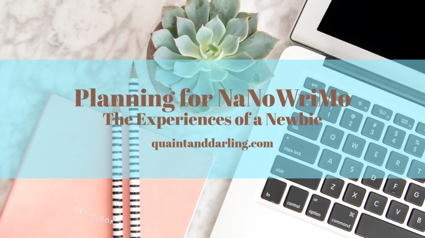 Planning for NaNoWriMo: The Experiences of a Newbie