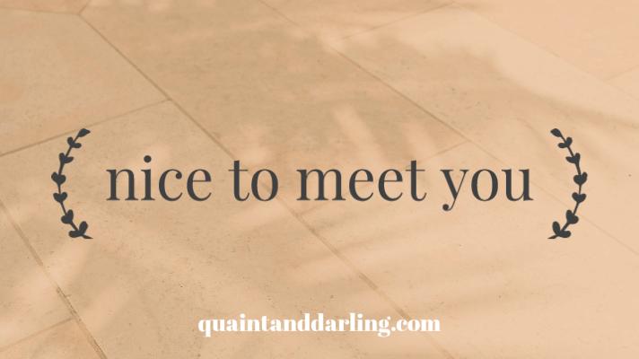 nice to meetyou